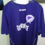 Training/Leisure football shirt 2011 - 2012