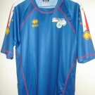 Home football shirt 2010 - ?