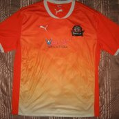 Home football shirt 2013