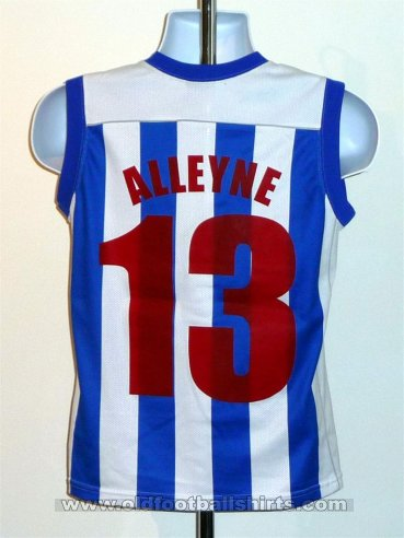 Brighton & Hove Albion Special football shirt 2005