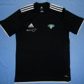 Training/Leisure football shirt 2012 - 2013