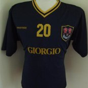 Training/Leisure football shirt 2001 - 2003