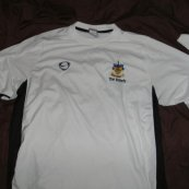 Training/Leisure football shirt 2008 - 2009